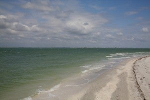 Sanibel Beach Florida