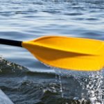 Paddling the Great Calusa Blueway