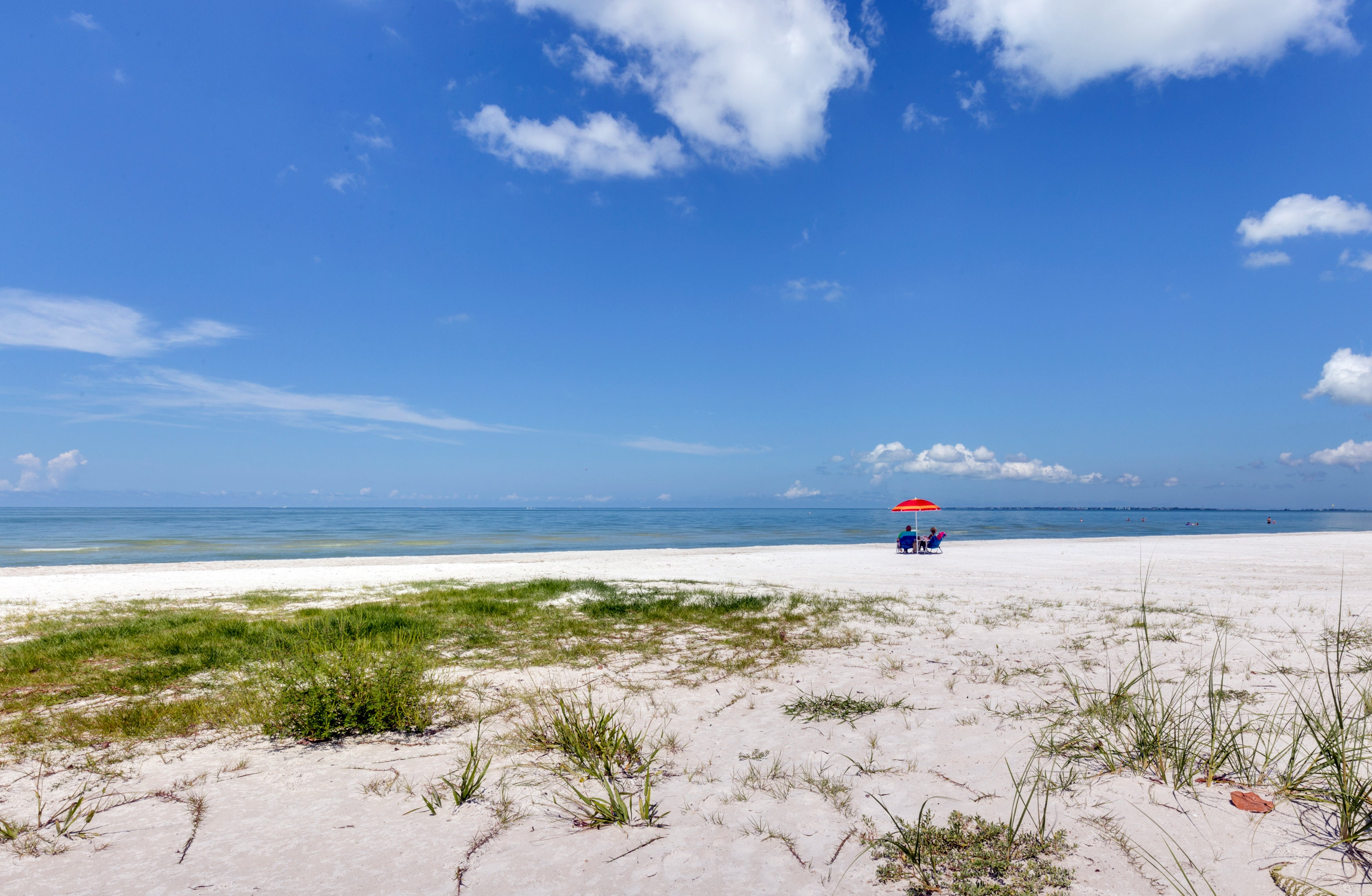 Make a Lifetime of Memories This Summer in Florida