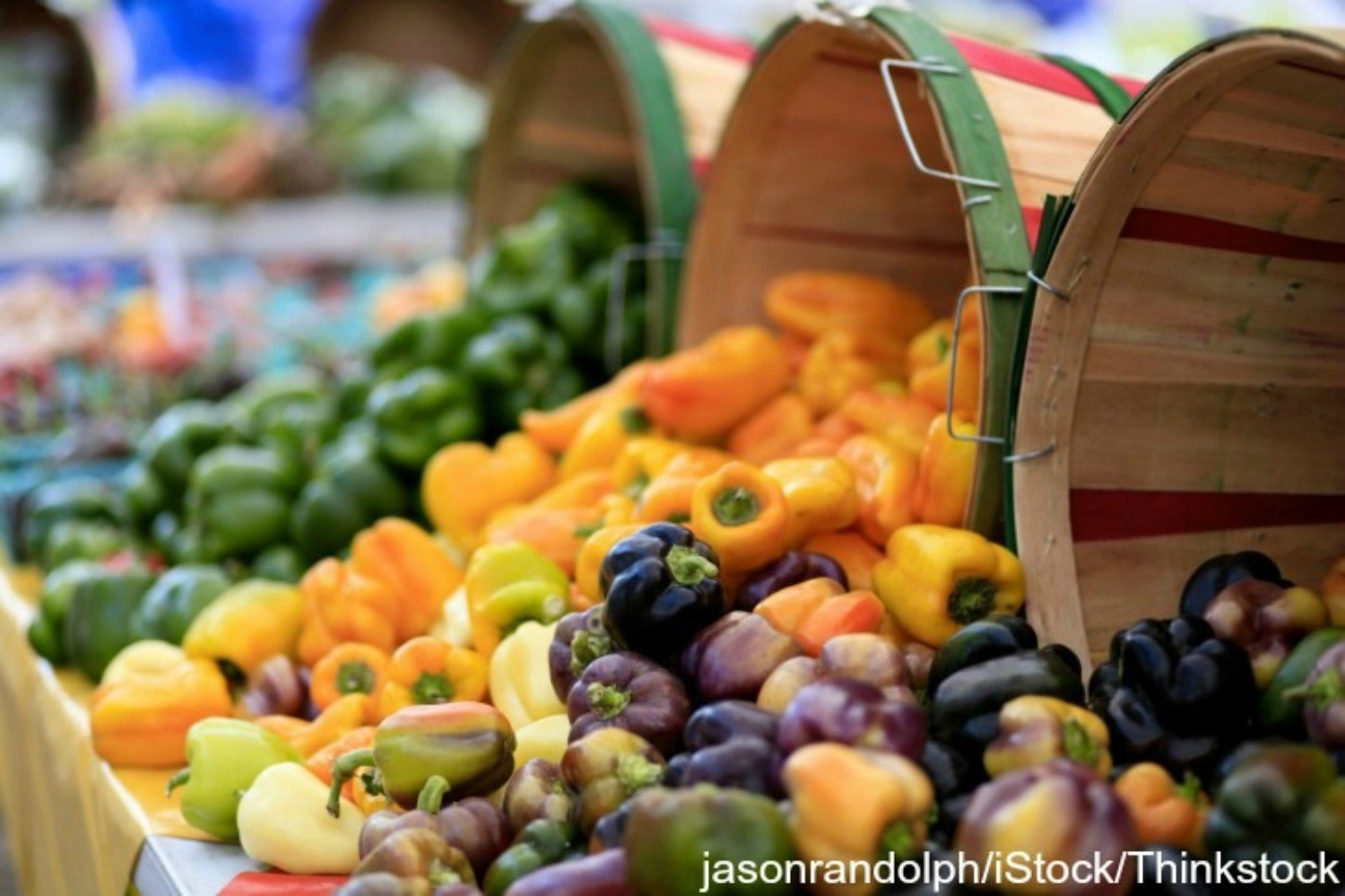 15 of the Most Delicious Finds at the Fort Myers Beach Farmers Market
