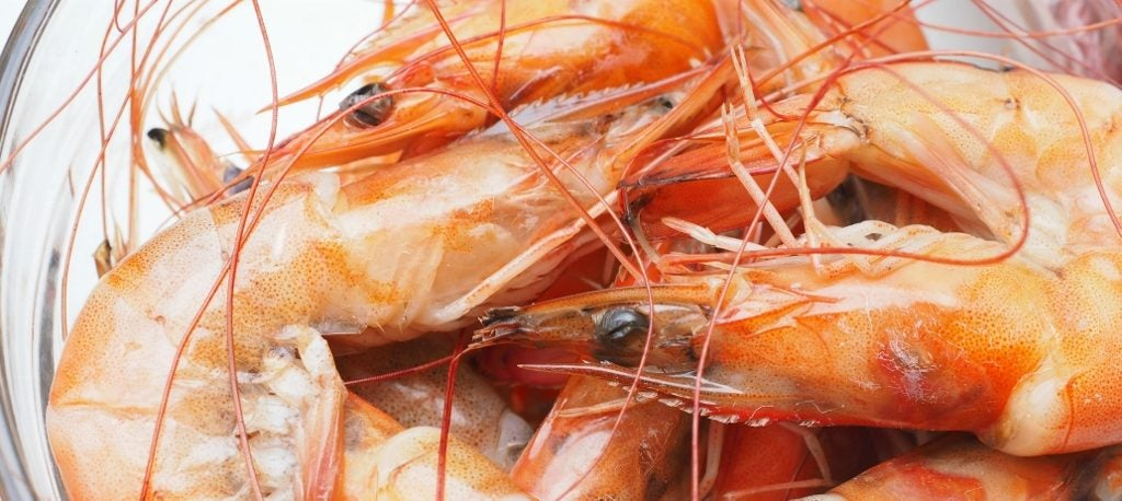 Fort Myers Beach Shrimp Festival jumps to life March 11-12