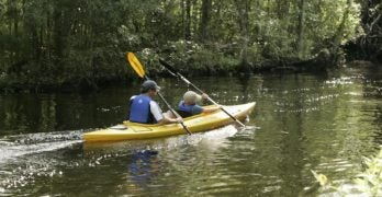 Kayak adventures abound in our paradise!